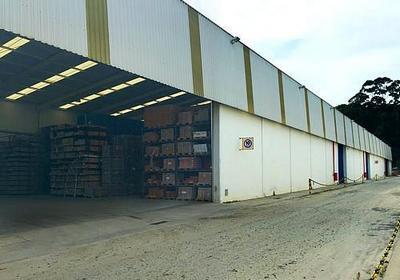Distribuidor de cimento em campinas